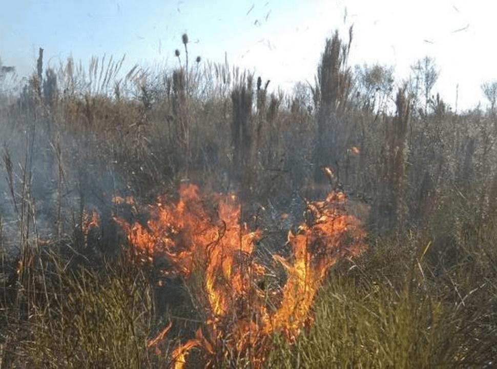 Tras un nuevo incendio en la reserva de Ciudad Evita, los vecinos vuelven a movilizarse