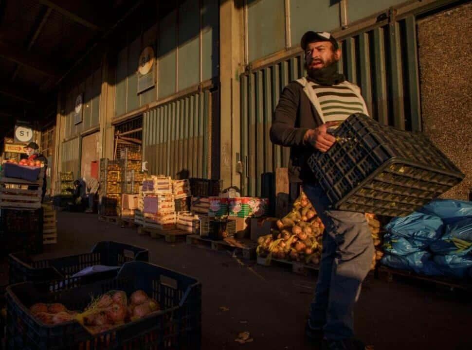 Cooperativas se unen en Alta Red, para vender alimentos sanos y agroecológicos al mejor precio: dónde comprar en el Oeste
